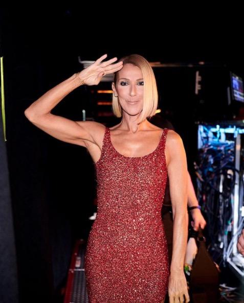 Céline Dion très mince