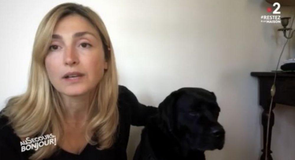 Julie Gayet demande aux français de ne pas abandonner leurs animaux