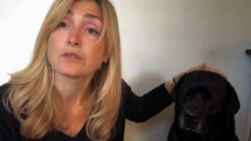 Julie Gayet souhaite réduire les abandons des animaux de compagnie
