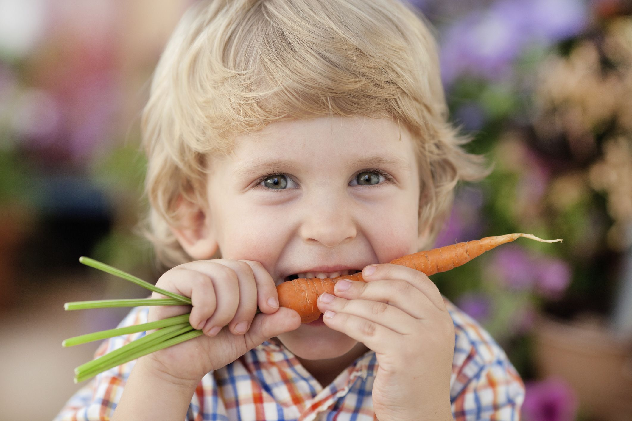 Enfant qui mange une carotte